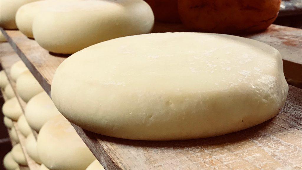 come fare il formaggio pecorino in casa